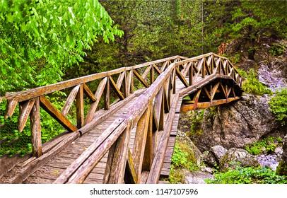 Wooden bridge in mountain forest view. Mountain forest bridge view. Wooden bridge forest scene