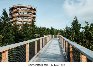 Wooden bridge and observation deck for walking through treetops. Pohorje Treetop Walk, Rogla. Slovenia, Europe.