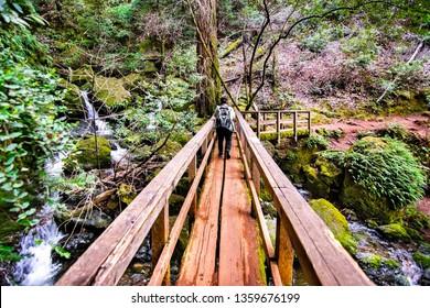 Wooden bridge on Cataract trail in Mt Tamalpais Watershed, Marin County, north San Francisco bay area, California