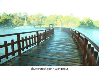 Wooden bridge on the lake in Botanical garden