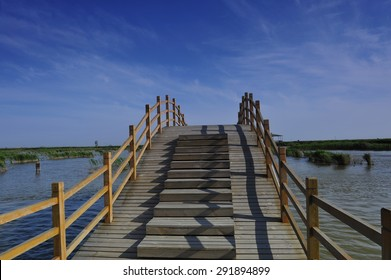 The wooden bridge on the river
