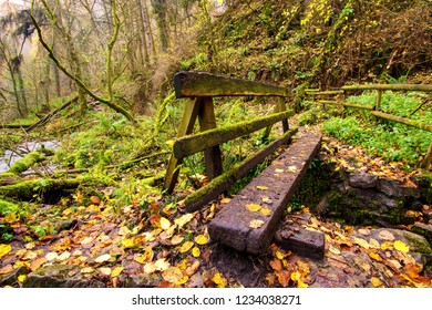 A wooden bridge on a walk through Chee Dale in the peak district. Chee dale near Millers Dale is a beautiful walk through a limestone gorge which the river wye runs through.