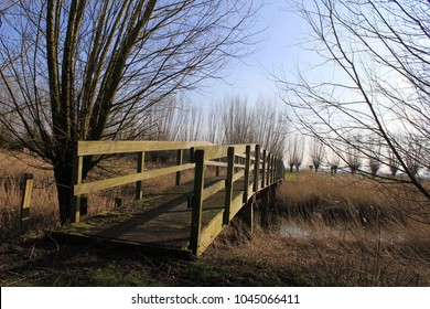 a wooden bridge over a creek with reed beds in a nature reserve in winter