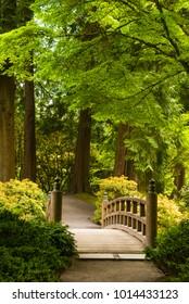 Wooden bridge over a pond in a Japanese garden