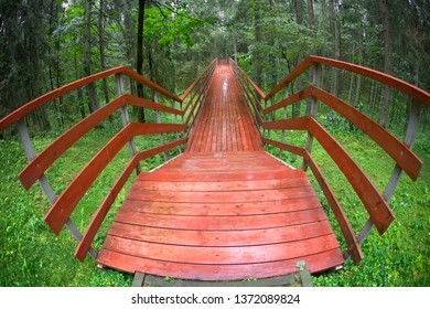 Wooden bridge over a ravine in a forest on a rainy summer day