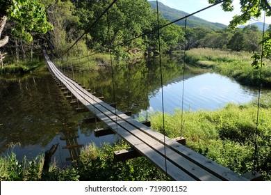 Wooden bridge over the river. Primorye.
