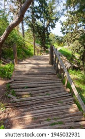 Wooden bridge in the park of Filopappou Hill, near Akropolis, in Athens city, Greece, Europe