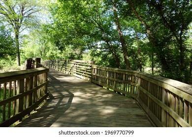 Wooden Bridge and Paved Path in the Middle of the Woods