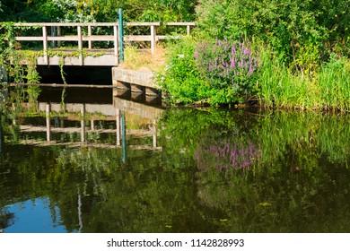 wooden bridge, reflection in the water in nature park Bossche Broek , 's Hertogenbosch, The Netherlands