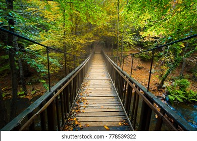 Wooden bridge. Uludag, Bursa, Turkey