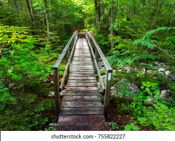 Wooden Bridge in Vermont Forest - Appalachian Trail
