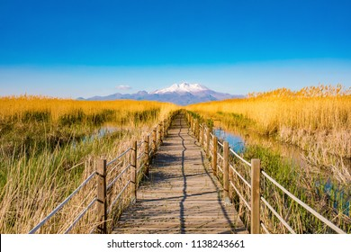 Wooden bridge walkway path on marshes and reeds in front of mountain. This is from Sultan Sazligi and Erciyes Mountain in Kayseri Turkey. Pastoral beautiful landscape background.