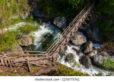 wooden bridges in the forest