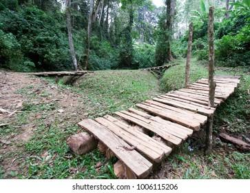 Wooden bridges over a small stream in Kakamega forest, Kenya