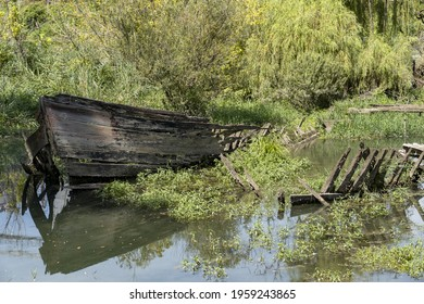 A wooden broken boat isolated on the reflective water with green trees and plants