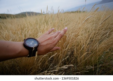 wooden brown wristwatch on a sunburnt female hand among spikelets and yellow dry grass on a blurred background of hills and river