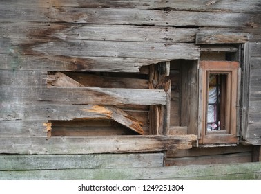 Wooden building ruins, wall damage with fungus. The rot of construction and wood material decomposition process. An example of tree home parasites.