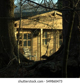 Wooden cabin in woods, lit by the rising sun.