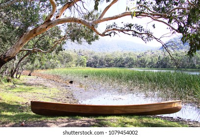 Wooden canoe resting on the shore under a gum tree at Dunns Swamp in NSW, Australia