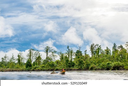 Wooden canoes floated down the river in the wild jungles of New Guinea. Indonesia Asmat, Irian Jaya province, Indonesia