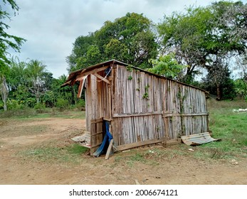 wooden chicken stall with farm landscape