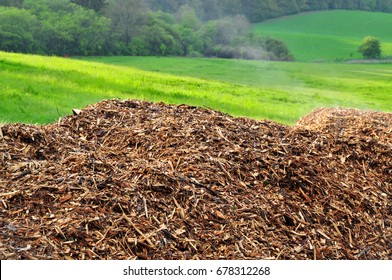 wooden chips natural biomass fiber