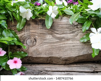 Wooden classic copyspace and flowers around it in colors of white and pink