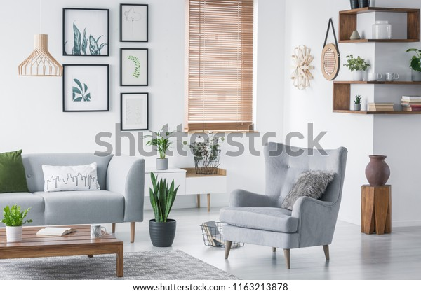 Wooden corner shelves with decor and fresh plants hanging on wall in real photo of bright living room interior with armchair with fur cushion, window with wooden blinds and coffee table