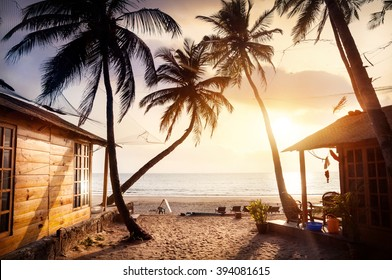 Wooden cottage with sea view in tropical resort with curved coconut palm trees and sunbed on the beach at beautiful sunset