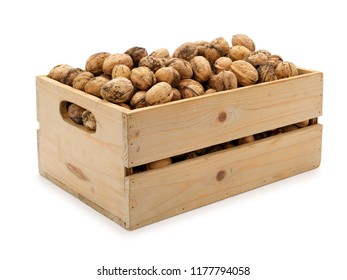 Wooden crate filled with walnuts on white. Contains clipping path
