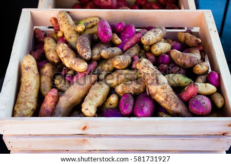Wooden crate full of colorful organic potatoes at a local outdoor farmers market.