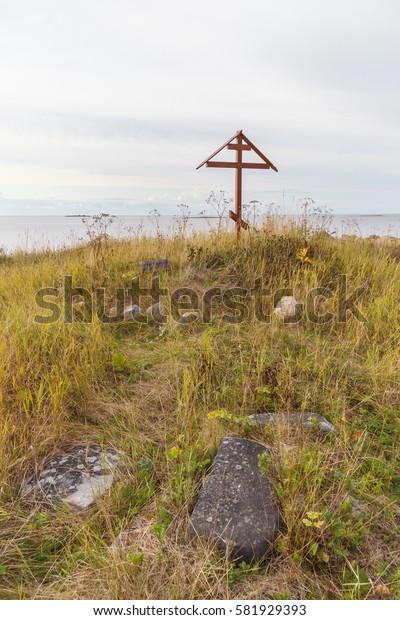 Wooden cross near Pine on Solovki