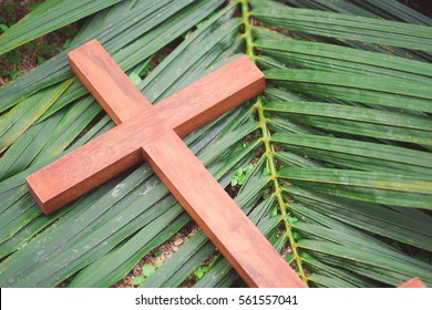 wooden cross on palm leaf.Palm sunday and easter day concept.