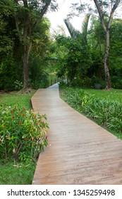 Wooden curved walkway through greenery grass plant on nature trail.