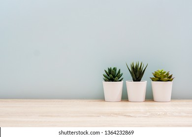 Wooden desk table top with tree pot on white wall, with copy space