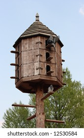 Wooden dovecote with several pigeons
