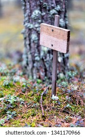 Wooden empty plaque in the forest, solitude, solitude, environmental protection
