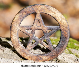 Wooden encircled pentagram symbol on fibrous tree bark in the forest. Five elements: Earth, Water, Air, Fire, Spirit.