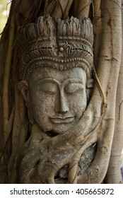 Wooden face thai graven image in the tree roots, Ayutthaya Thailand