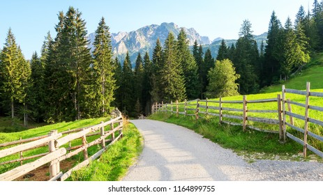 Wooden Fence and Countryside Road in Bosaca Village on Durmitor Mountain in Montenegro