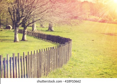 Wooden Fence Early in the Morning