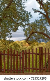 Wooden Fence Gate against a Fairytale Countryside Mysterious Landscape