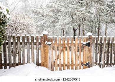 Wooden fence gate with lock, locked latch covered in white snow at heavy snowing snowstorm, storm, falling snowflakes by house, home with forest, bushes in background