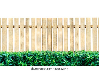 Wooden fence and green leaves isolated on a white background.