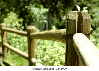 Wooden fence in nature