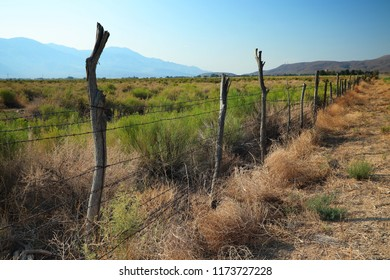 Wooden fence on arid ranch, Owens Valley, California, USA