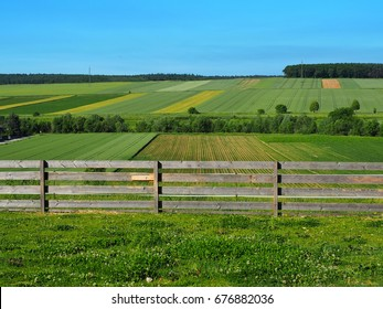 Wooden fence on green meadows and fields. Countryside in Burgenland. Austria, June 2017.
