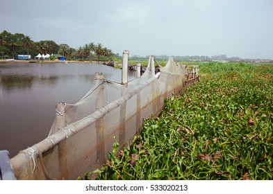Wooden fence on the shore