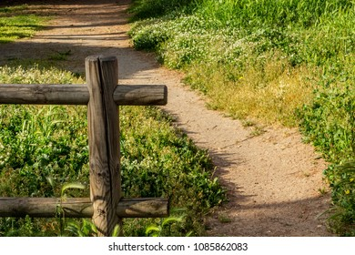 A wooden fence opens up giving space to a path towards the green of nature.