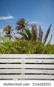 Wooden fence with palm trees in the background over a blue sky